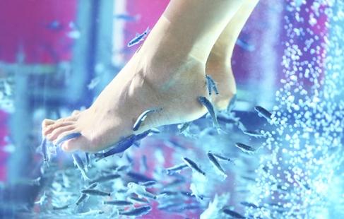 Fantastisk fodforkælelse
