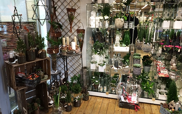 Deal.dk - Blomster, planter og krukker