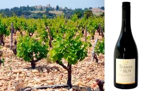 12 flasker Côtes-du-Rhône