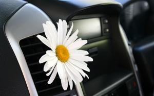 Frisk luft på køreturen