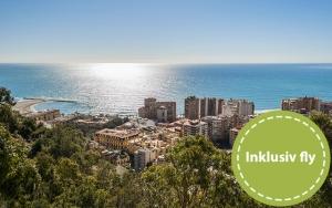 Maleriske Malaga