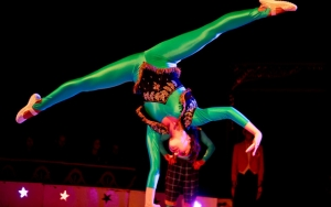 Cirkus for ALLE