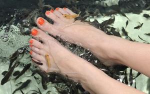 Friske og bløde fødder