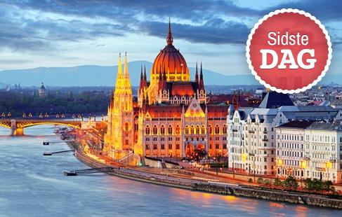 Oplev storbyen ved Donau
