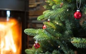 Juletræet med sin pynt ♫