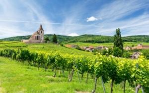 Oplev smukke Alsace