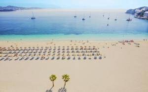 Nyd livet på Mallorca