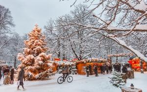Julemarked & grænsehandel