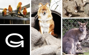 Familiehygge i Zoo