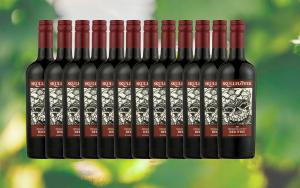 Rødvin til under halv pris